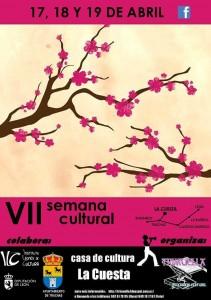 Cartel del VII Semana Cultural de La Cuesta